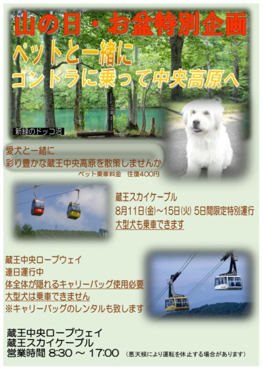 ペットとロープウェイ夏の特別企画‼️_b0185375_16203169.jpg