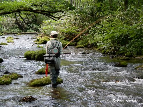 高原キャンプ&Fishing_d0261148_18075464.jpg