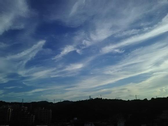 笹の露と雲_b0299052_19282308.jpg