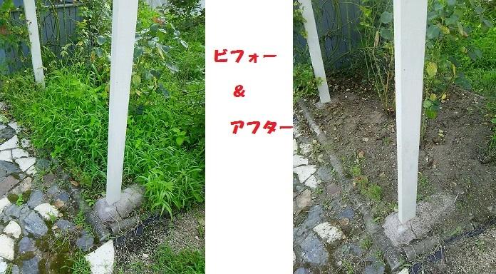 b0266191_18060351.jpg