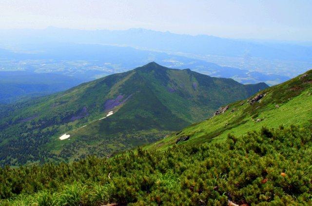 2017年7月13日(木) 富良野岳(標高1912m)~三峰山(1866m)~上富良野岳(1893m)_a0345007_20124663.jpg