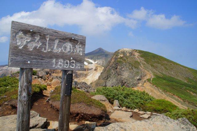 2017年7月13日(木) 富良野岳(標高1912m)~三峰山(1866m)~上富良野岳(1893m)_a0345007_20355398.jpg