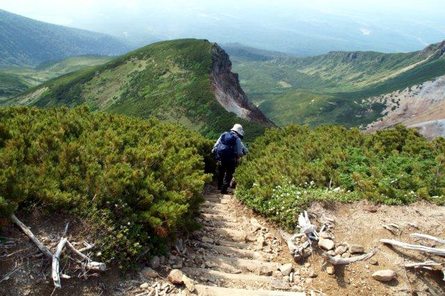 2017年7月13日(木) 富良野岳(標高1912m)~三峰山(1866m)~上富良野岳(1893m)_a0345007_203914100.jpg