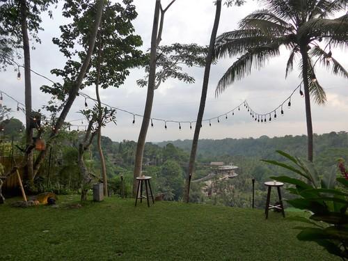バリ島へ行く⑨ ~絶景&絶品ならココ!サヤンハウス~_f0232060_18272340.jpg