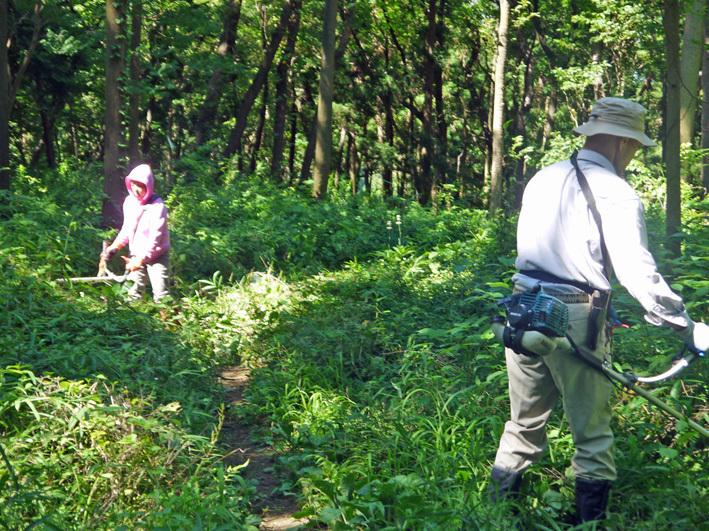 猛暑の中、鎌倉高生3人下草刈りに挑戦7月六国見山定例手入れ_c0014967_10533060.jpg