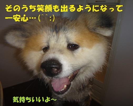 f0121712_00175708.jpg