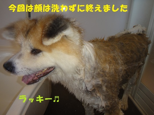 f0121712_00180124.jpg