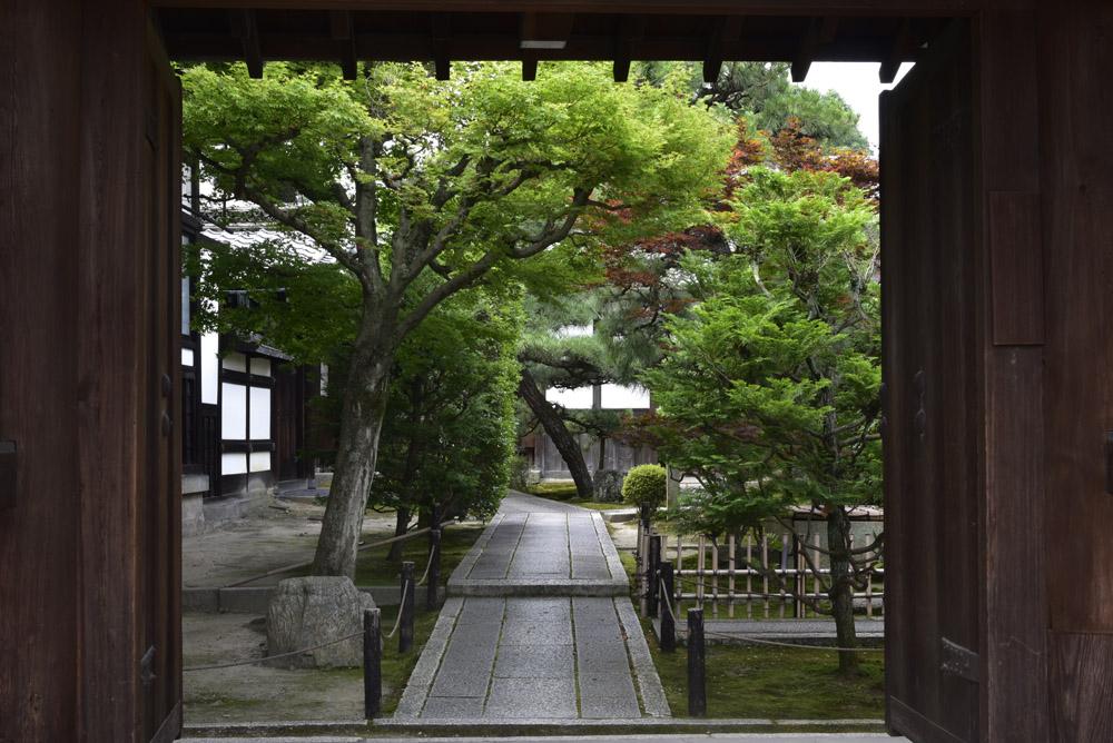 京都の緑_e0367330_20351659.jpg