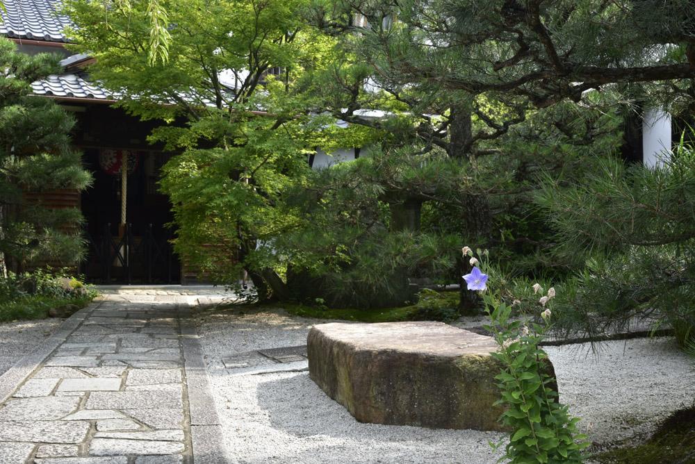 京都の緑_e0367330_2039012.jpg