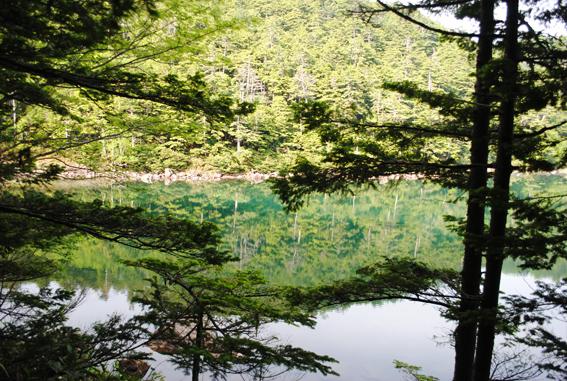 水辺の森_b0194880_22524111.jpg