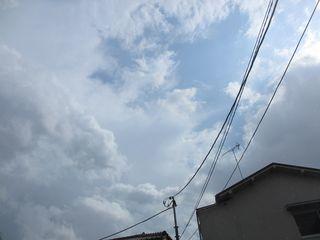 板橋区の成増で、ひょうが!?_c0223192_22563535.jpg