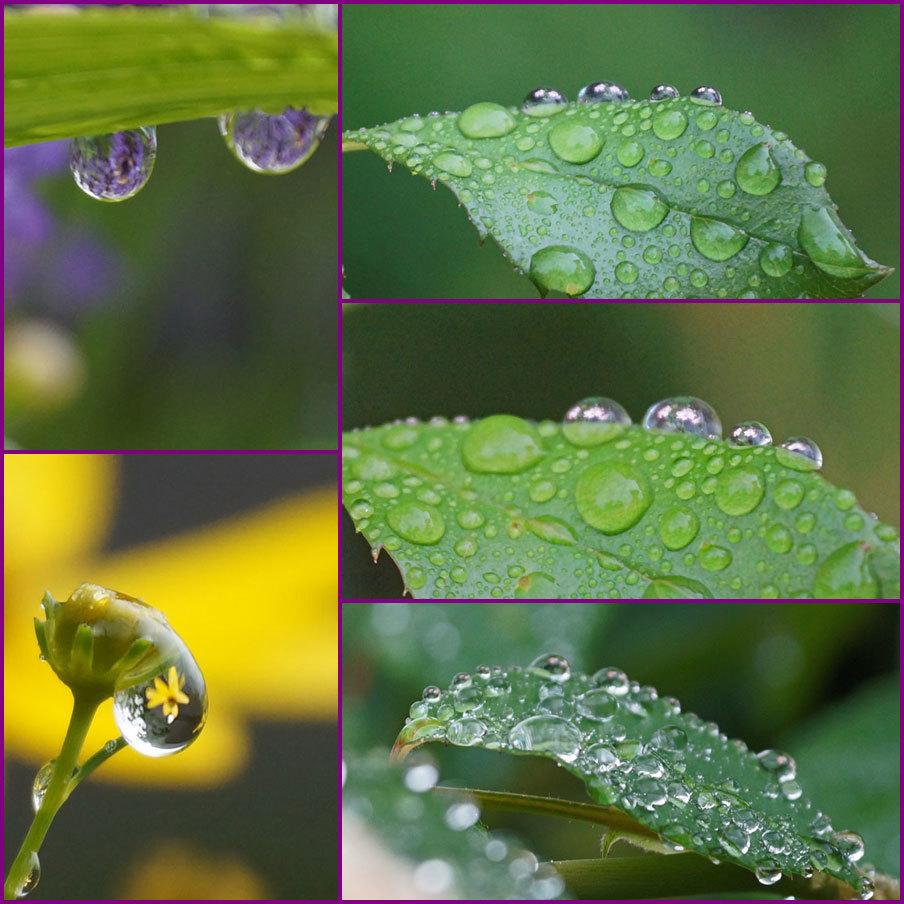 水滴・・2_d0162994_19423945.jpg