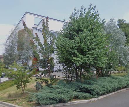 温室のある家 夏の外観の様子_b0183404_11441232.jpg