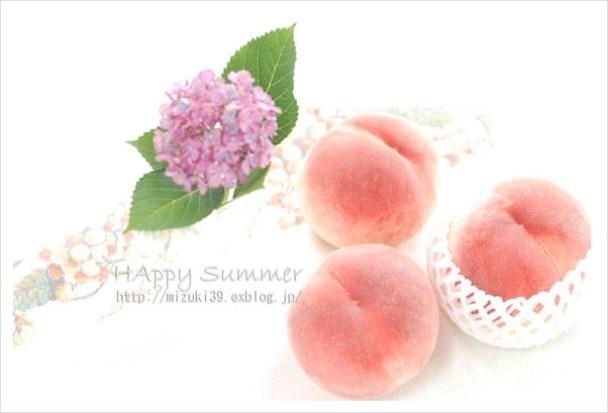 暑中お見舞い申し上げます。_c0091505_20132976.jpg