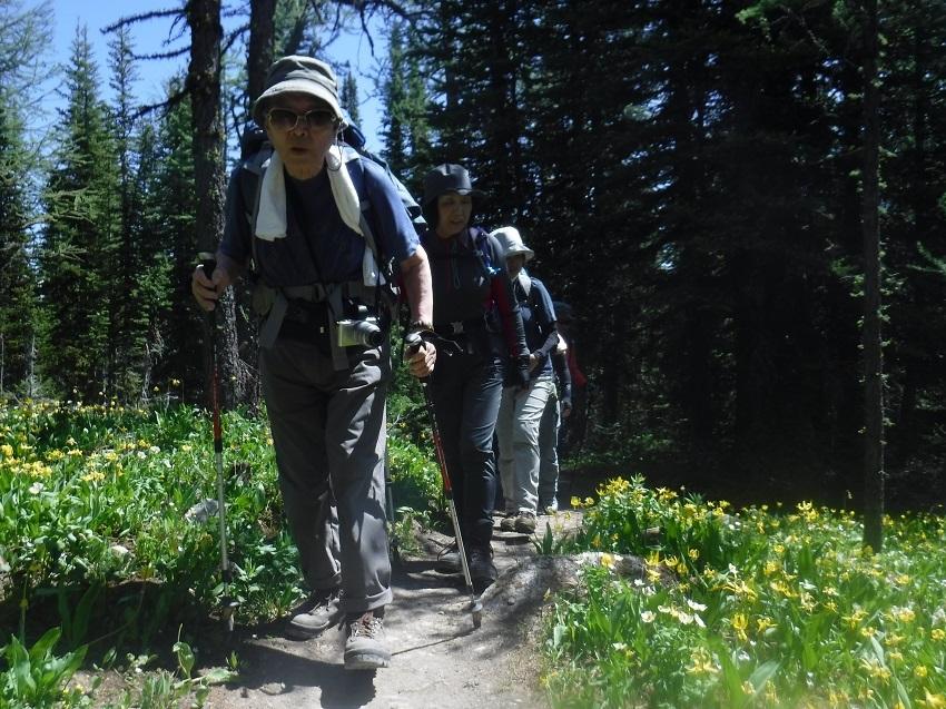 初夏のロッキーを満喫! アシニボインロッジ滞在とロッキーハイキング 8泊9日の旅_d0112928_14483299.jpg