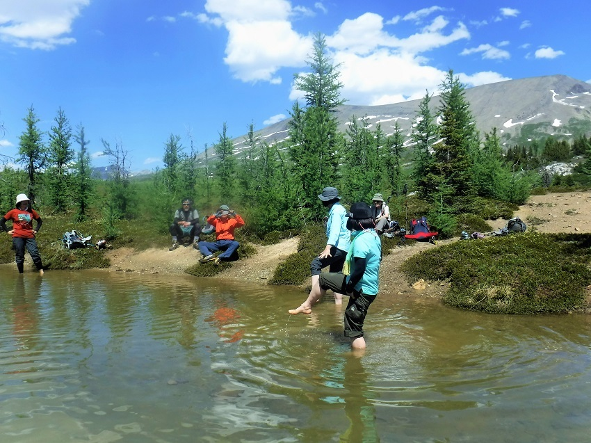 初夏のロッキーを満喫! アシニボインロッジ滞在とロッキーハイキング 8泊9日の旅_d0112928_14490860.jpg