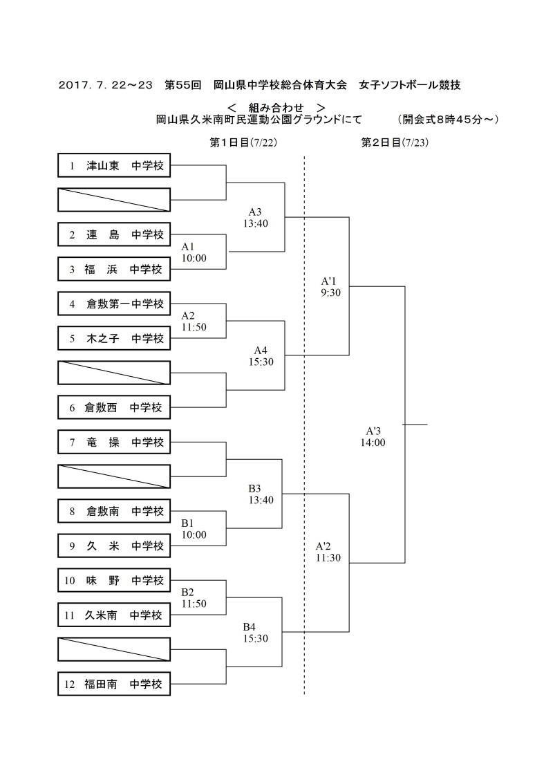 岡山県大会と都大会組み合わせ_b0249247_22414207.jpg