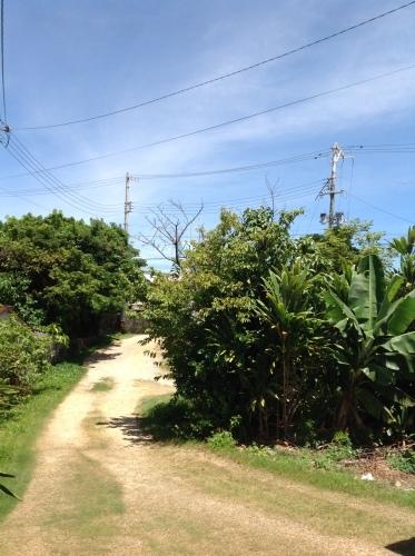 沖縄からガラスたより 到着便_b0153663_01360884.jpeg