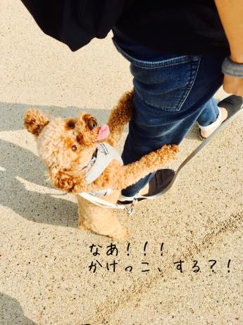 朝活_b0370192_08581839.jpg