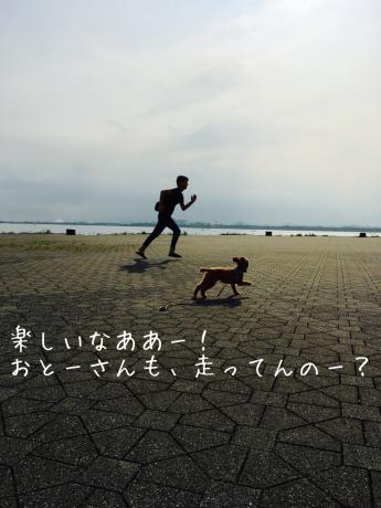 朝活_b0370192_08581846.jpg