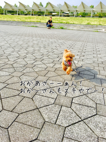 朝活_b0370192_08582073.jpg