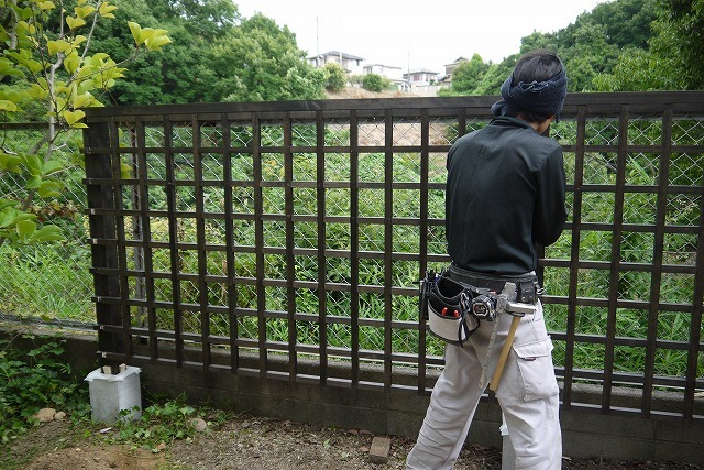 寄せ植えとバラの庭の工事_a0233896_16274754.jpg