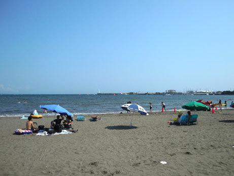 江の島の海岸とおしゃれスズメ_d0020309_21022558.jpg