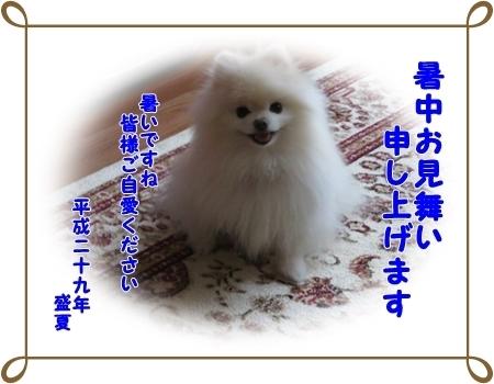 b0167519_09514999.jpg