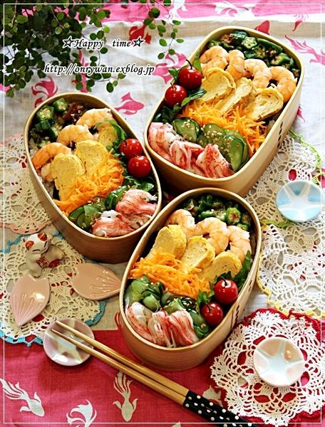 乗っけて簡単ちらし寿司弁当とパイナップル日記②とわんこ♪_f0348032_17335307.jpg