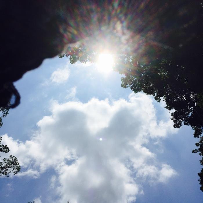 The sun is shinening   深呼吸とオアシス。_d0105967_08534955.jpg