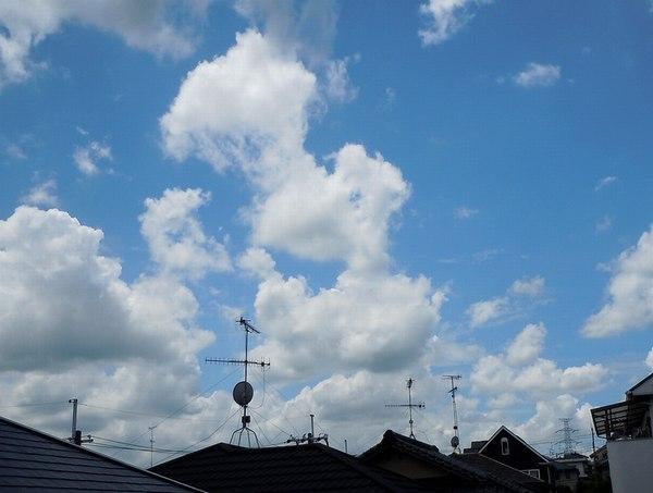 今から思いやられるこの夏の暑さ_b0102572_1401044.jpg