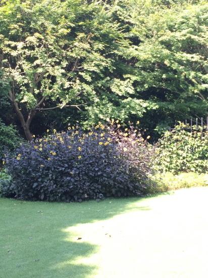日高理恵子「空と樹と」 —ヴァンジ彫刻庭園美術館_f0236691_13422863.jpg