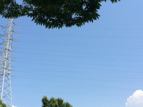 日高理恵子「空と樹と」 —ヴァンジ彫刻庭園美術館_f0236691_13425544.jpg