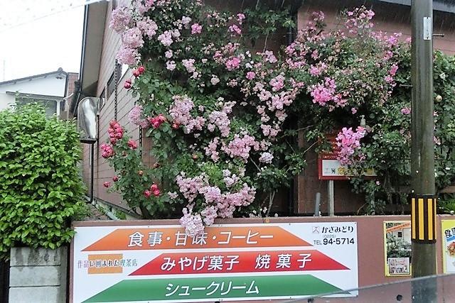 藤田八束の震災からの復興計画@素敵な仲間ととの出会い、日本製紙の夜景・・・これからの石巻を考える、復興の方法_d0181492_13223652.jpg
