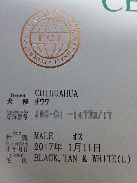 b0341140_1936950.jpg
