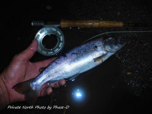 昨日の釣り_d0261148_15263141.jpg