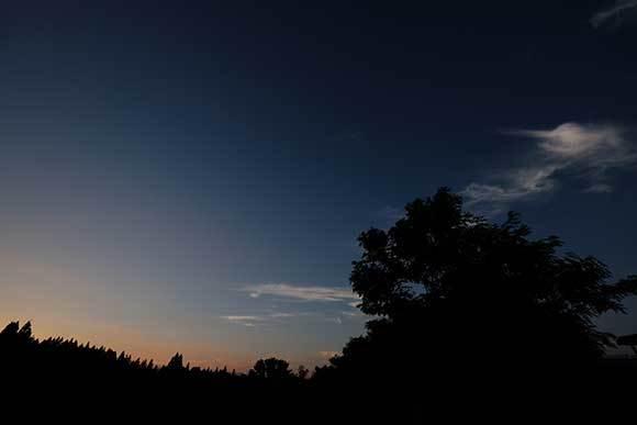 穏やかな夕暮れ_e0220159_21290468.jpg