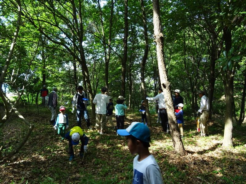 うみべの森探検・・・ZooCanくらぶ_c0108460_22314574.jpg