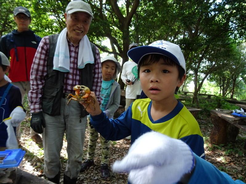 うみべの森探検・・・ZooCanくらぶ_c0108460_22324504.jpg