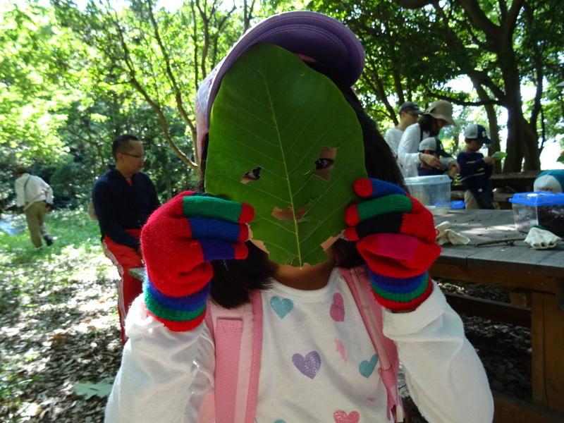 うみべの森探検・・・ZooCanくらぶ_c0108460_22334437.jpg
