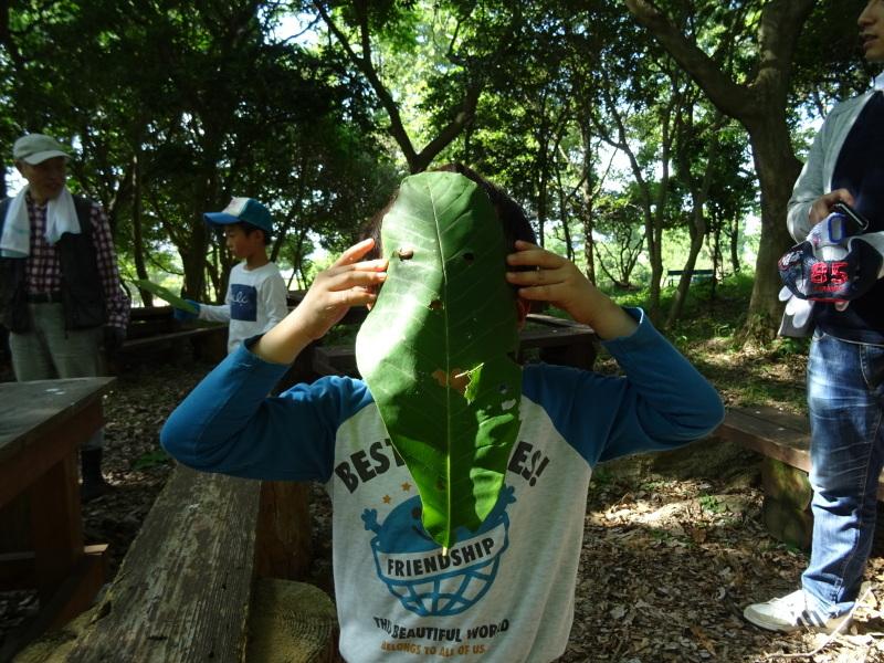 うみべの森探検・・・ZooCanくらぶ_c0108460_22344998.jpg