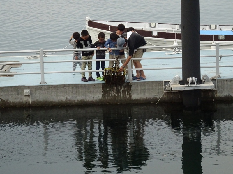 青少年海洋センターでBBQ・・・ZooCanくらぶ_c0108460_23012359.jpg