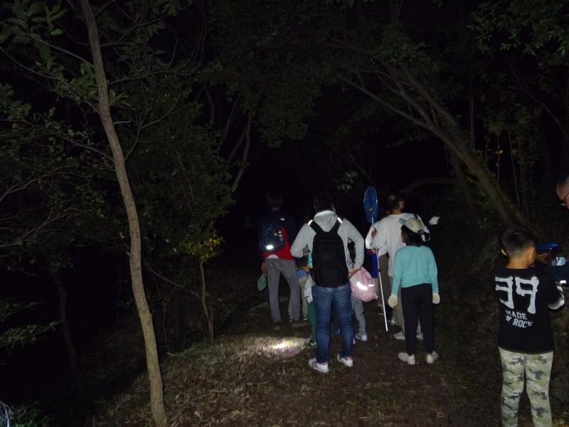うみべの森でカブトムシ探し&ウミホタル観察・・・ZooCanくらぶ_c0108460_23544638.jpg