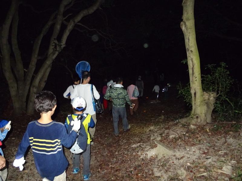 うみべの森でカブトムシ探し&ウミホタル観察・・・ZooCanくらぶ_c0108460_23544862.jpg