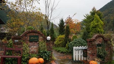 今年もジャイアントかぼちゃ_e0365880_09115553.jpg