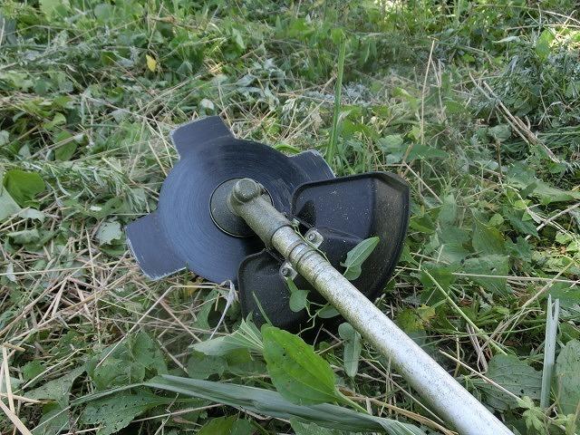 スイカの甘みが身体に浸みわたる 猛暑の中、今年初めての滝川の草刈り清掃_f0141310_06423989.jpg