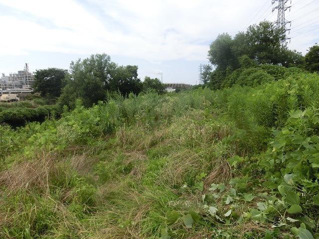 スイカの甘みが身体に浸みわたる 猛暑の中、今年初めての滝川の草刈り清掃_f0141310_06430360.jpg