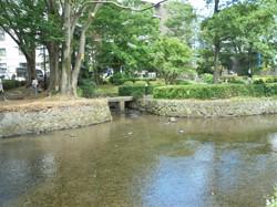 桜川_c0087349_4395199.jpg