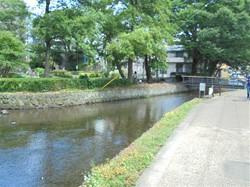 桜川_c0087349_440925.jpg
