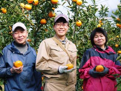 究極の柑橘『せとか』 平成30年度の収穫に向け、着果後の様子を現地取材_a0254656_18030082.jpg